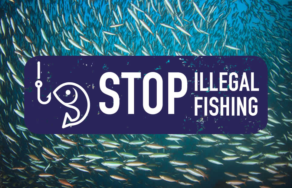stop-illegal-fishing-2